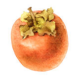Persimmon  on white background Stock Image