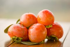 Persimmons Royalty Free Stock Photography