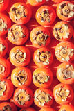 Persimmons Royaltyfri Fotografi