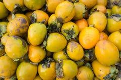 persimmons Royaltyfria Bilder