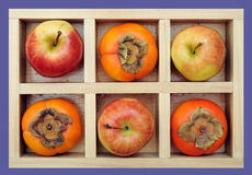 Persimmons And Apples Royalty Free Stock Image