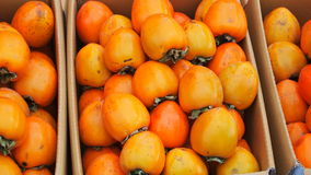 Persimmons in a box Stock Photos