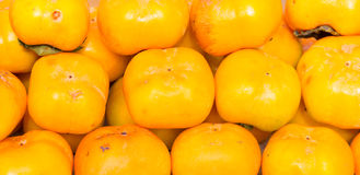 Persimmons fruit Stock Images