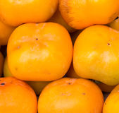 Persimmons owocowi Obraz Royalty Free