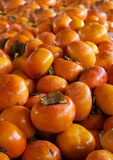 Persimmons pile Royalty Free Stock Photos