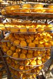 Persimmons under sunlight Stock Photography