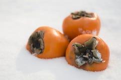 Persimmons w śniegu Obraz Royalty Free