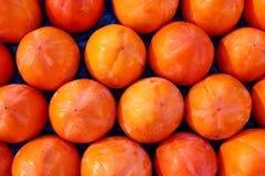 Persimon frutifica teste padrão na fruta do arranjo das fileiras Fotografia de Stock
