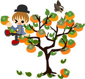 Persimonträd vektor illustrationer