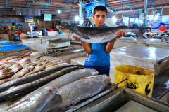 Persischer Händlerjunge zeigt frische Fische an der Markthalle Stockfotografie