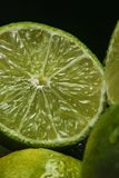 Persisk limefrukt, också bekant Tahiti limefrukt royaltyfri bild