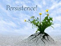 persistence Fotografia de Stock Royalty Free