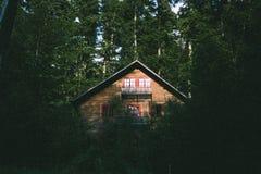 Perso nel legno fotografia stock