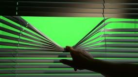Person öffnet horizontal Jalousievorhänge mit einem Finger Grüner Bildschirm stock footage