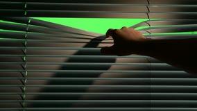 Person öffnet horizontal Jalousievorhänge mit einem Finger Grüner Bildschirm stock video