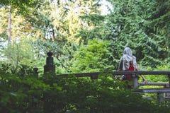 Person auf Brücke in der schönen Einstellung Lizenzfreie Stockbilder