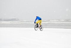Person in bike on the beach Stock Image