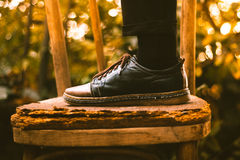 Person in Black Brown Leather Shoe Royalty Free Stock Images