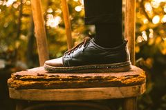 Person in Black Brown Leather Shoe Stock Photography