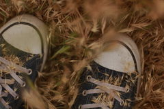 Person on Black Converse Sneakers on Brown Withered Grass Stock Image