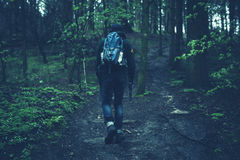 Person in Black Jacket Walking on Black Soil Between Green Leaf Trees Stock Photo