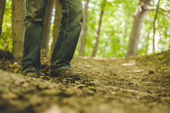Person in Blue Jeans Surrounded by Trees Stock Photo