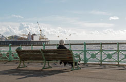 Person on Brighton Promenade Royalty Free Stock Image