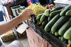 Person buying string bean. On the market Stock Photos
