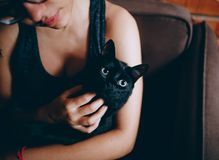 Person Carrying Black Cat royalty free stock images