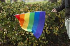 Person Carrying Rainbow Flag imagenes de archivo
