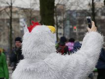 Person in a chicken suit taking a selfie. Person in a white fluffy chicken, cock or rooster suit taking a selfie with a mobile phone in an urban street with Royalty Free Stock Images