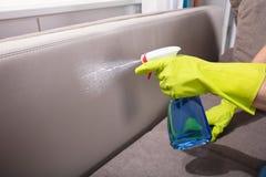 Person Cleaning Sofa With Spray flaska royaltyfri fotografi