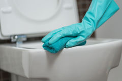 Person cleaning the toilet seat in rubber gloves Stock Photos