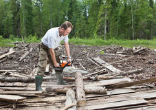 The person clears away a forest blockage Stock Photo
