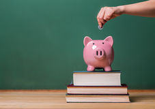 Person depositing money in a piggy bank on top of books with chalkboard. Person depositing money in a pink piggy bank on top of books with chalkboard in the Stock Photos