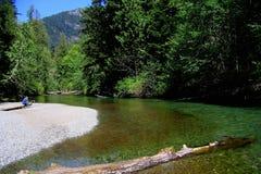 Person, die auf Gravelbank auf Cameron River, provinzieller Park Macmillan, Vancouver Island sitzt stockfotos