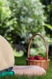 Person, die beim Korb von Erdbeeren liegt Lizenzfreie Stockfotografie