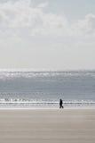 Person, die entlang Strand geht Stockfotos