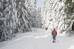 Person, die im Winter snowshoeing ist Stockfotografie
