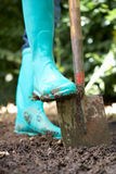 Person digging in garden. Close up crop of person digging in garden stock photography