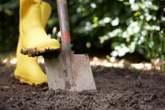 Person digging in garden Royalty Free Stock Photography