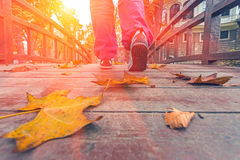 Person doing Morning Fitness on wooden Boardwalk in Downtown Park Stock Images