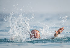 Person drowns in the water Royalty Free Stock Images