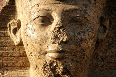 The person of the Egyptian sphinx Royalty Free Stock Images