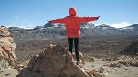 Person, einen enormen Krater von Teide-Vulkan in Teneriffa, Kanarische Inseln, Spanien beobachtend stock video