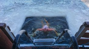 Person emerging from a swimming hole cut in ice. Person emerging from a swimming hole cut in the frozen ice surface of a lake viewed from the top of the exit royalty free stock photography
