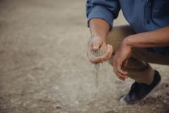 Person Examining Soil Royalty Free Stock Photos