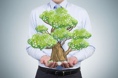 A person in formal clothes holds a sketched tree on the palms Royalty Free Stock Image