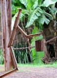 Person från en bambuidé för trädgårds- design Arkivbild