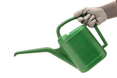 Person with gardening glove holding a watering can Royalty Free Stock Photo
